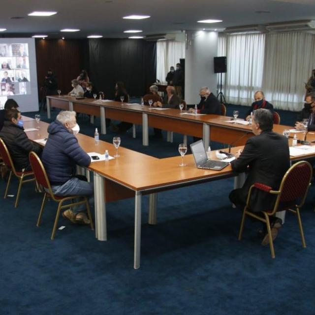 PARTICIPACIÓN DEL CONES EN LA CONFORMACIÓN DEL CONSEJO AGROINDUSTRIAL DEL CHACO